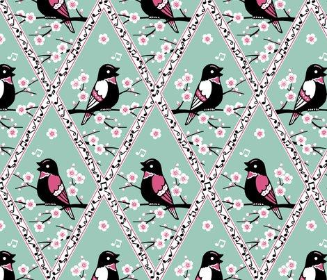 Rrcontest_birds_shop_preview
