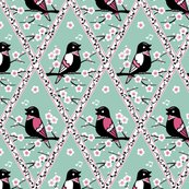 Rrcontest_birds_shop_thumb