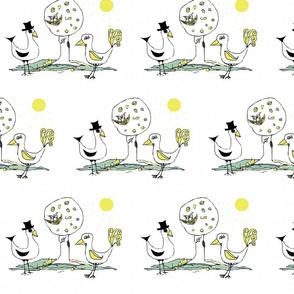 birds amore