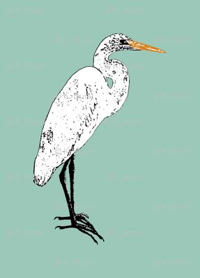 Endangered Egret