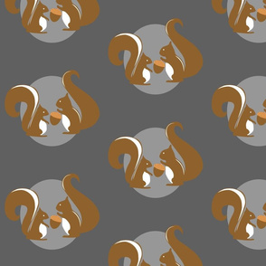 Squirrels in Gray