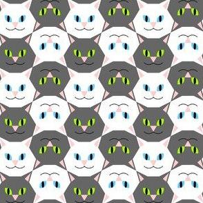 00751861 : cat head 2j