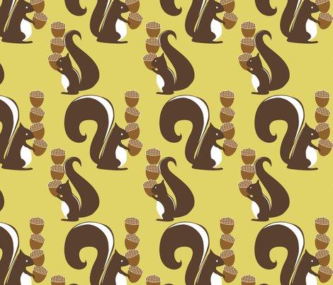 Rrsquirrels_shop_preview