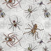 Rrrwebnspiders_shop_thumb