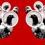 Rrrrrrrrrrrcrowd_of_pigeons_ed_ed_ed_ed_ed_ed_ed_ed_ed_ed_ed_ed_ed_ed_shop_thumb
