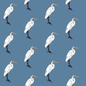 Endangered Egret on Blue