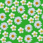 Rrrflowers2_shop_thumb