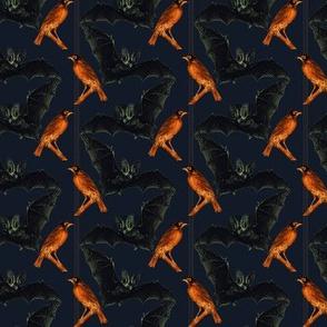 Bats And Robins, Robins and Bats