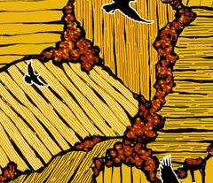 Rrrrras_the_crow_flies_crows_comment_99929_preview