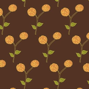 Golden Dahlia Blooms on Deep Brown