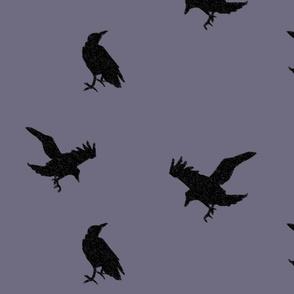 Raven Flight - Grey