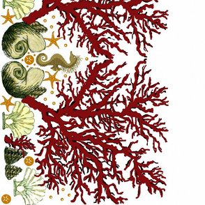 Red Coral Seahorse border