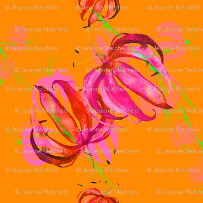 tropical flowers orange