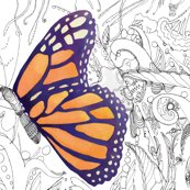 Rrbutterfly_inspiration_003_shop_thumb