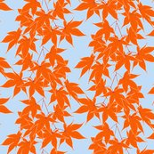 Rrfirst_frost_on_japanese_maple_repeat_shop_thumb