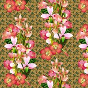 Rexotic_bouquet_shop_thumb