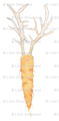 antler carrots