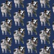 Rrraustralian_shepherds_shop_thumb