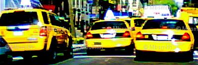 Ditsy Cab