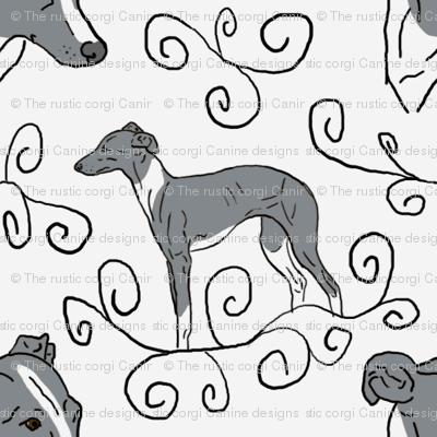 Italian Greyhound Elegance - gray