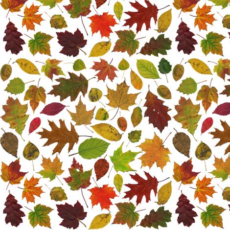 tiny leaves on white fabric by weavingmajor on Spoonflower - custom fabric