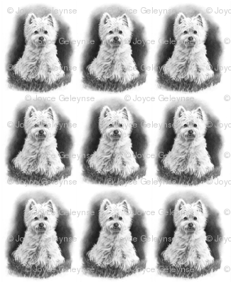 Pencil Drawing: West Highland Terrier