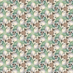 white_turnips_center_greens_5