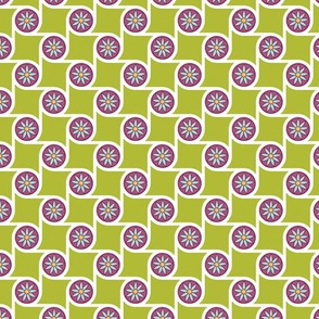 Scrolls Lime