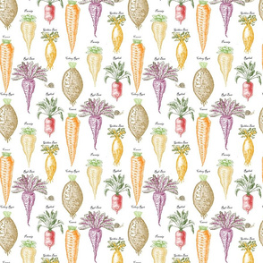 Root vegetables staggered on white background