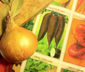 Rrrfrench_seed_packets_color_adjusted_copy_comment_112899_thumb