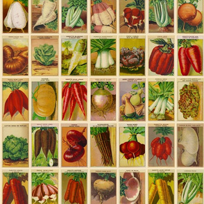 Vintage French Seed Packets