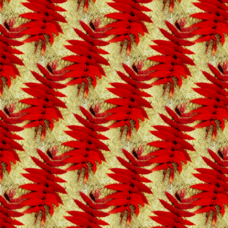 Fall Color fabric by donna_kallner on Spoonflower - custom fabric