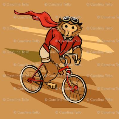 Monkey on a bike!