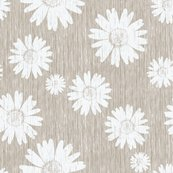 Rrfrench_daisy_-_antique_white_shop_thumb