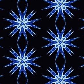 Nautilus Sta Snowflakesr 2