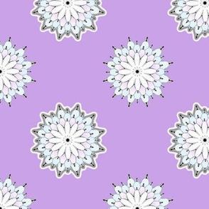 Mums (purple)