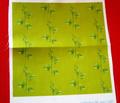 Rrrrrraspberryplant-zazzle-nosig_comment_109163_thumb