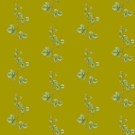 American Red Raspberry Plant - Green Background fabric by ccreechstudio on Spoonflower - custom fabric