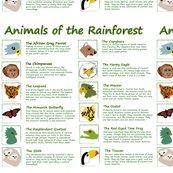 R_rainforest-panel_shop_thumb