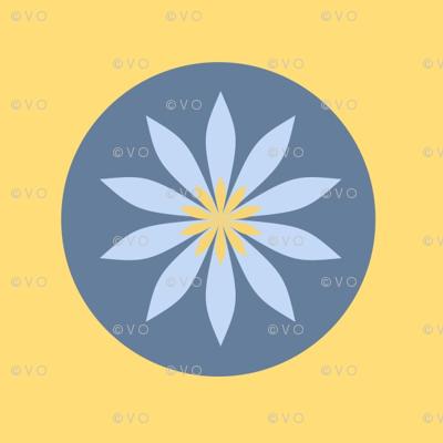 a daisy circle