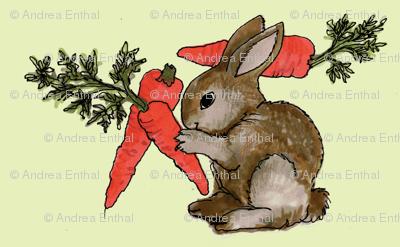 Bunny's Dream