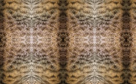 alfie cat fabric by decloo on Spoonflower - custom fabric