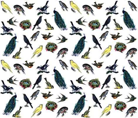 Birds fabric by victoriagolden on Spoonflower - custom fabric