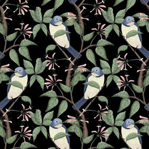 Bird Spotting Black (Small Scale Print)