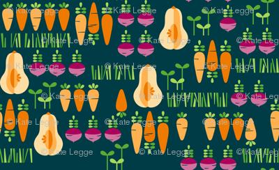Modern Root Veggie Patch