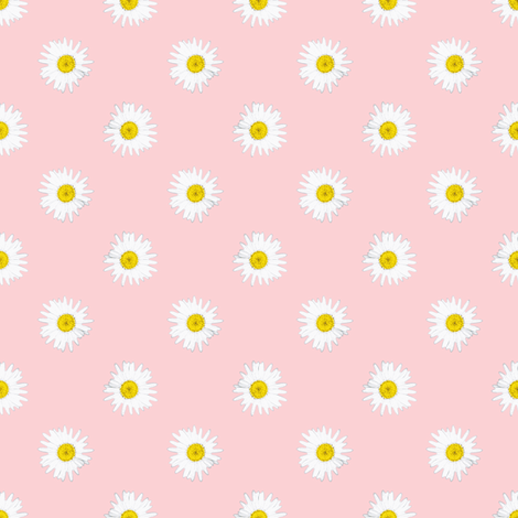 Shasta Daisy Polka Dots -- on pink fabric by bargello_stripes on Spoonflower - custom fabric
