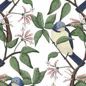 Rbird_spotting_w_small_shop_thumb