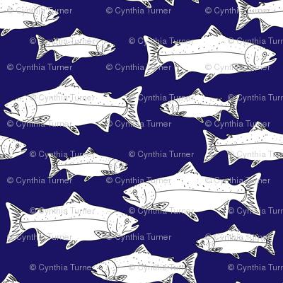 salmon3blueandwhite-01