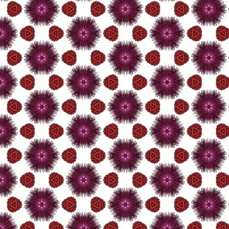 Secheli's Berries and Burrs fabric by siya on Spoonflower - custom fabric