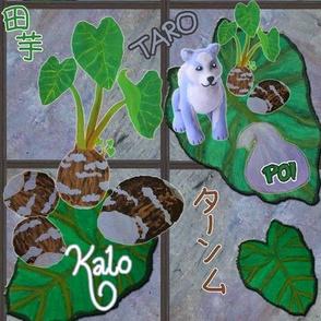 Kalo (Poi dog)